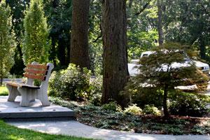 Best NJ Landscape Contractor