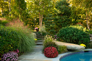 Stone Diving Rock Landscaping