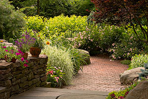 Stone Wall and Brick Path Garden