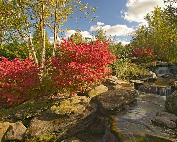 Harding Township Landscaping Waterfall