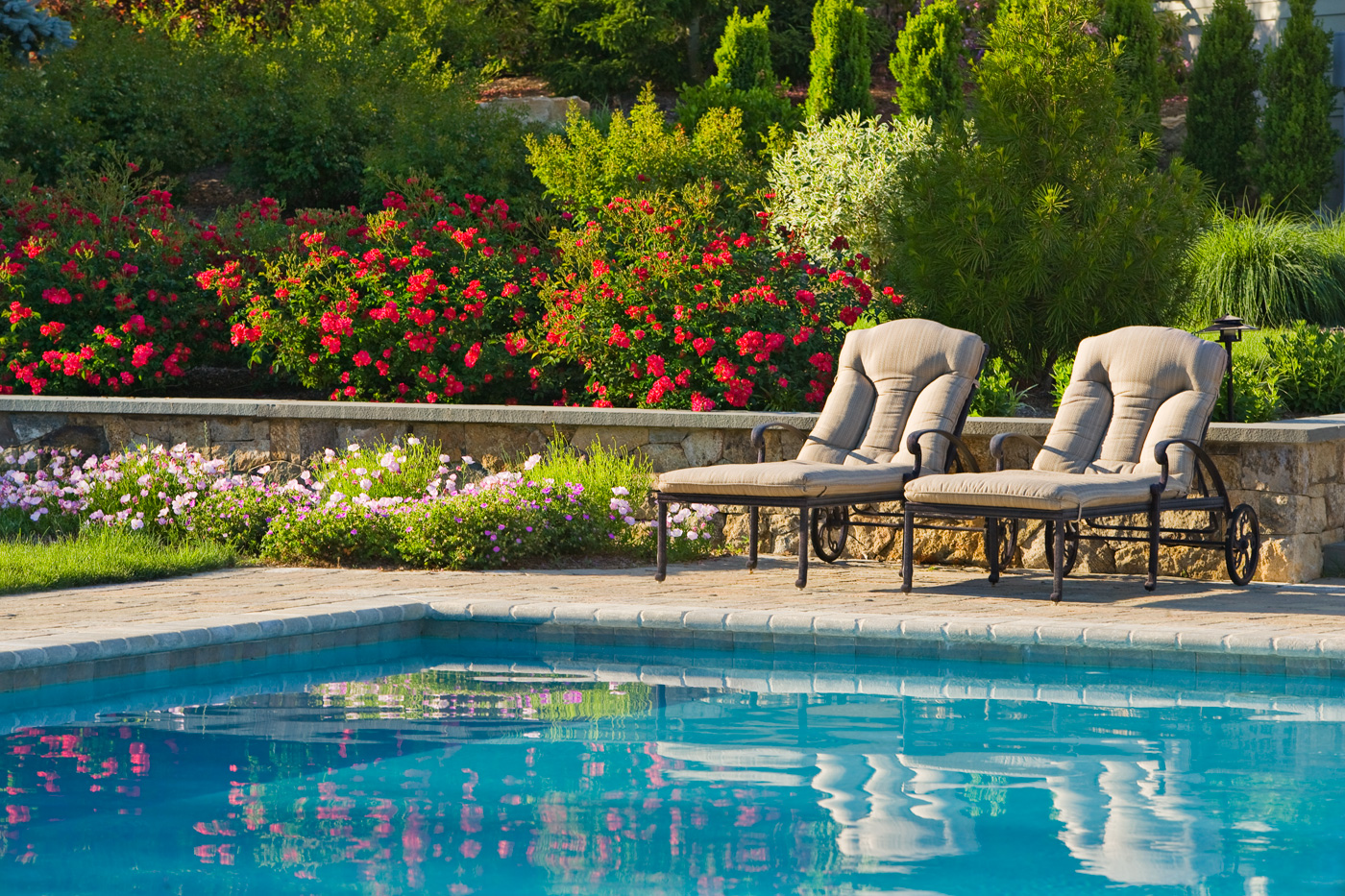 Desert garden ideas next to pools photograph formal swimmi for Garden city pool jobs
