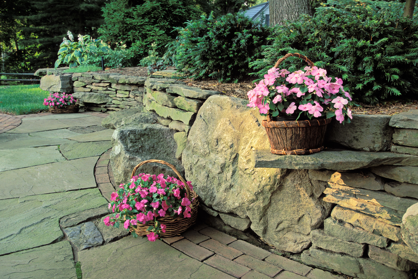 Wall landscape design