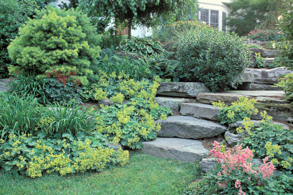 Natural stone steps cording landscape design for Natural garden designs