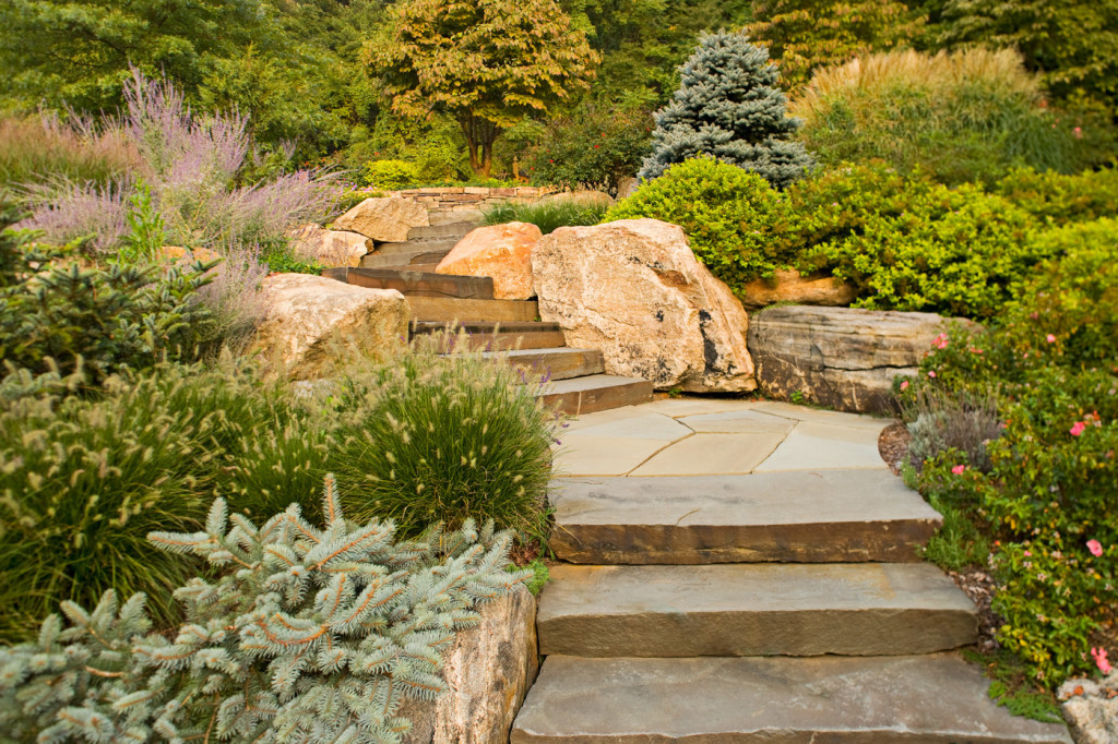 Natural stone steps cording landscape design for Pictures of stone steps