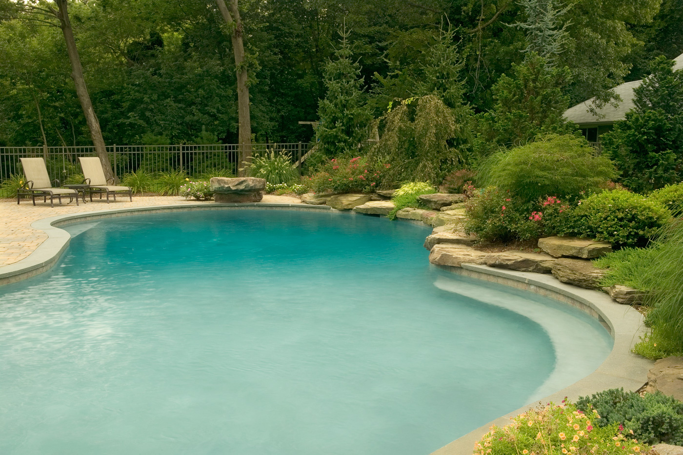 Building a natural swimming pool - Natural Swimming Pool In Nj By Cording Landscape Design