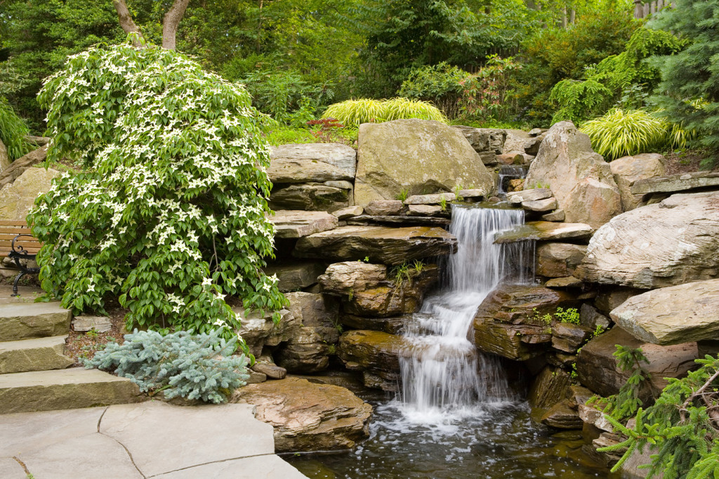 Waterfalls cording landscape design for Garden design with pond and waterfall