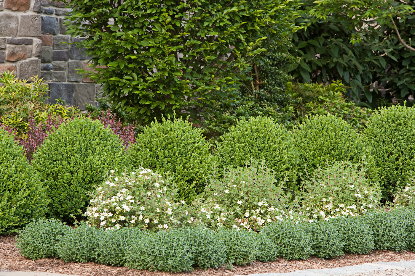 formal garden plantings - Garden Design Jersey