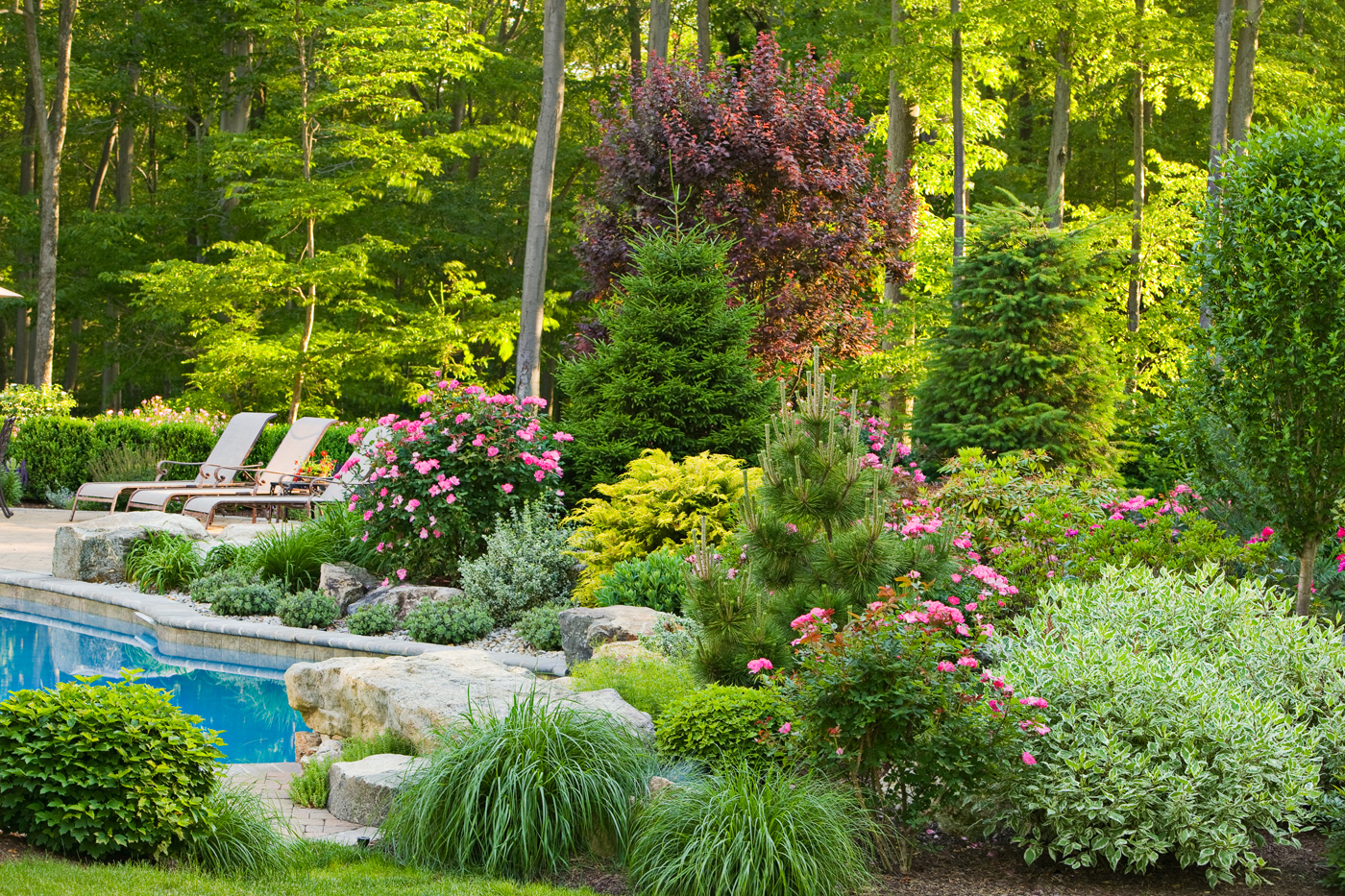 Seasonal Garden by Cording Landscape Design