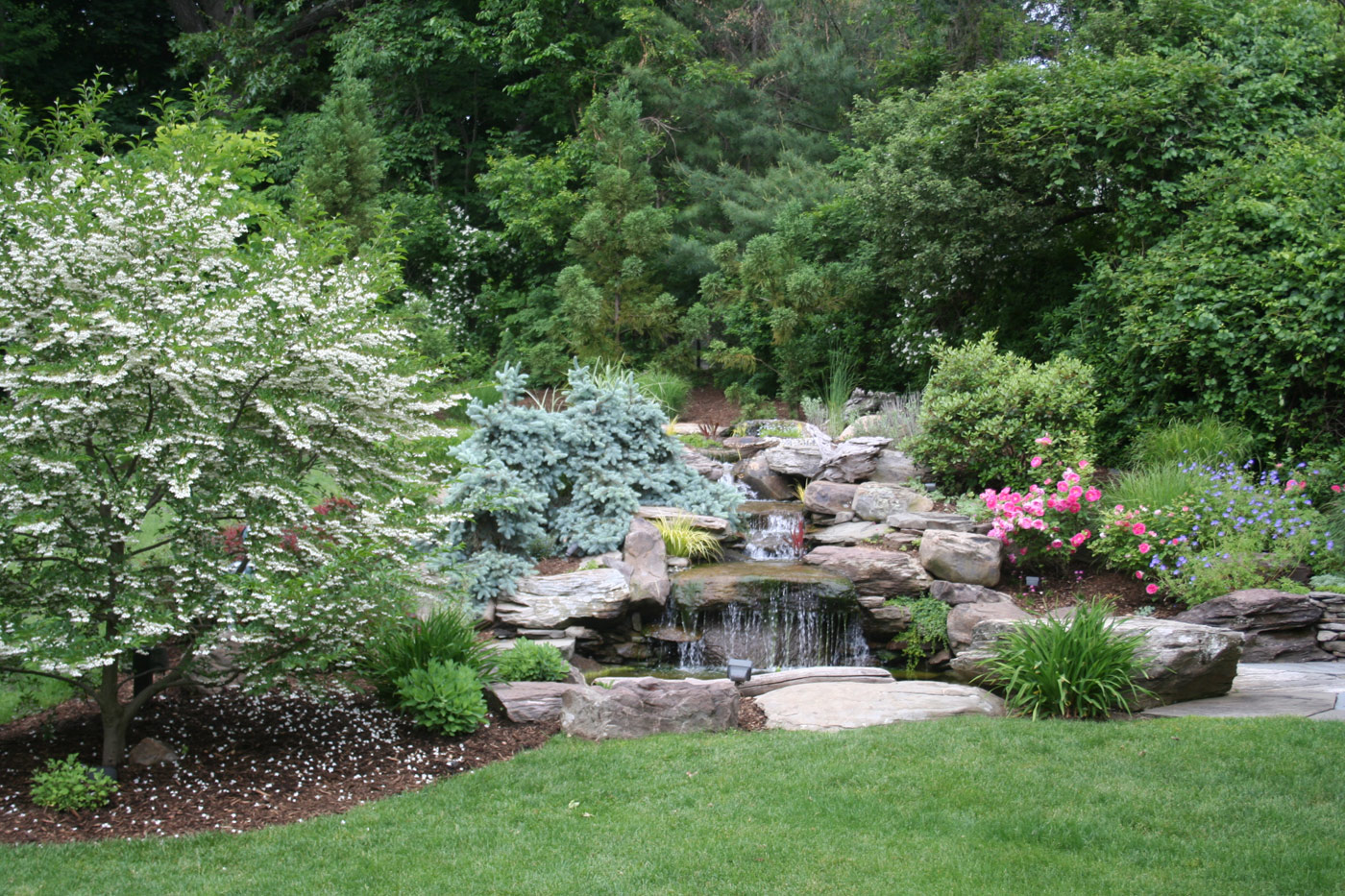 Pond Landscaping in New Jersey by Cording Landscape Design