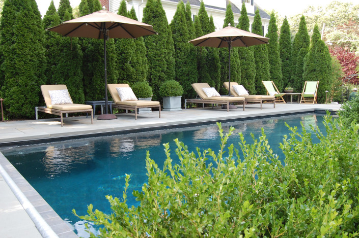 Cording Landscape Design | Formal Swimming Pool