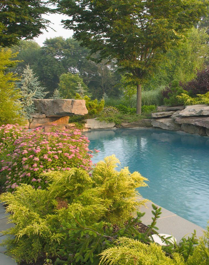 Beautiful Natural Swimming Pools in New Jersey on natural bathroom design, natural swimming pool landscape, natural swimming pool builders, natural looking swimming pools, natural back yard garden design, natural landscape design with rock, natural garden pond design, pool landscape design, natural swimming pool construction, waterfront landscape design, natural swimming pool with landscaping, natural swimming pools designs idea, natural swimming pond,
