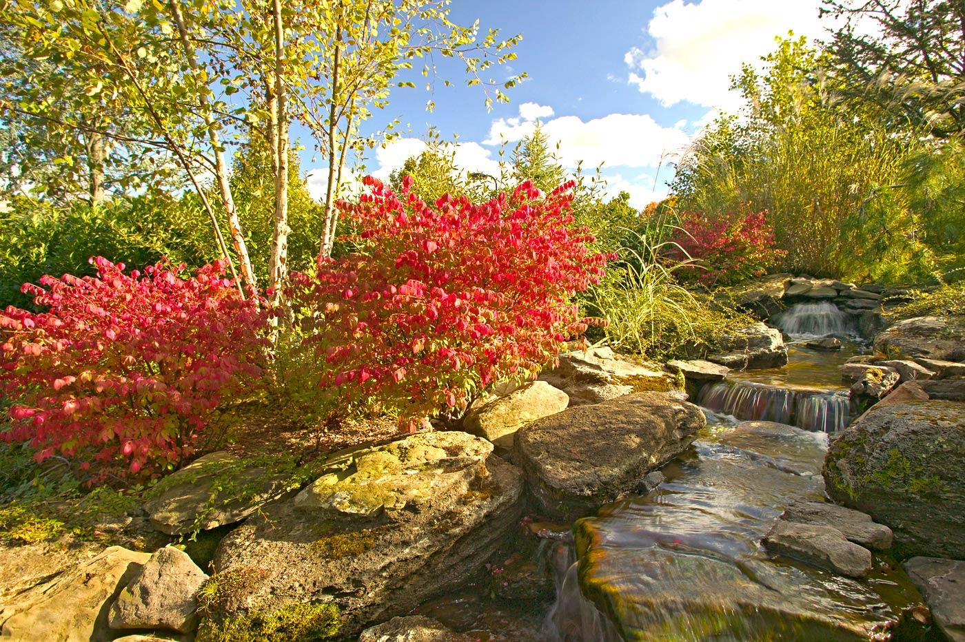 Landscaping nj new jersey gardens cording landscape for Landscape design nj