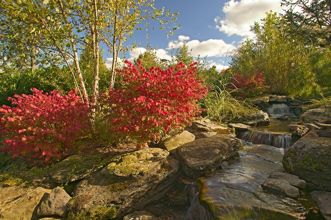 Cording Landscape Design - Beautiful Ideas - Water Features