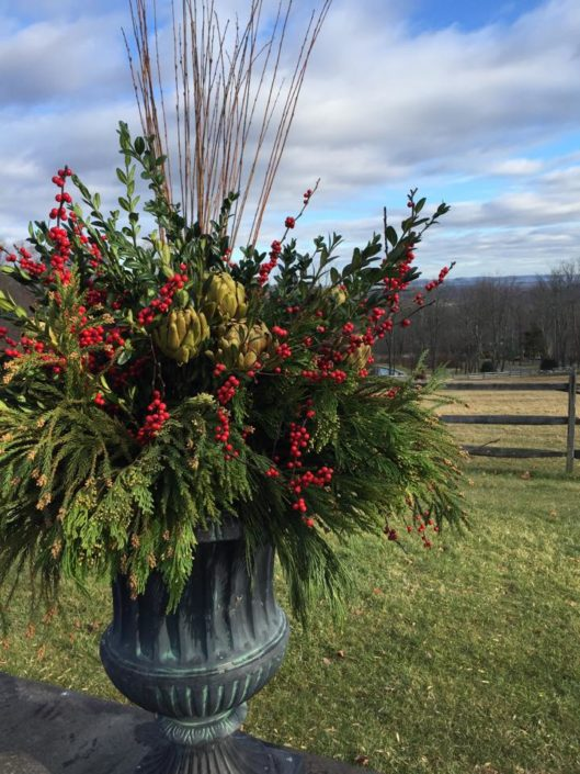 Container Gardens Holidays Cording Landscape Design