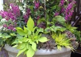 Cording Landscape Design - Container Gardens for Summer