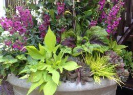 Cording Landscape Design - Container Gardens for Summer