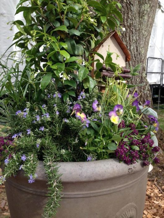 Cording Landscape Design - Container Gardens for Spring