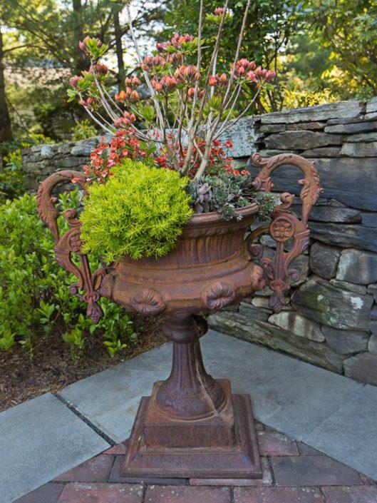 Cording Landscape Design - Container Gardens for Spring