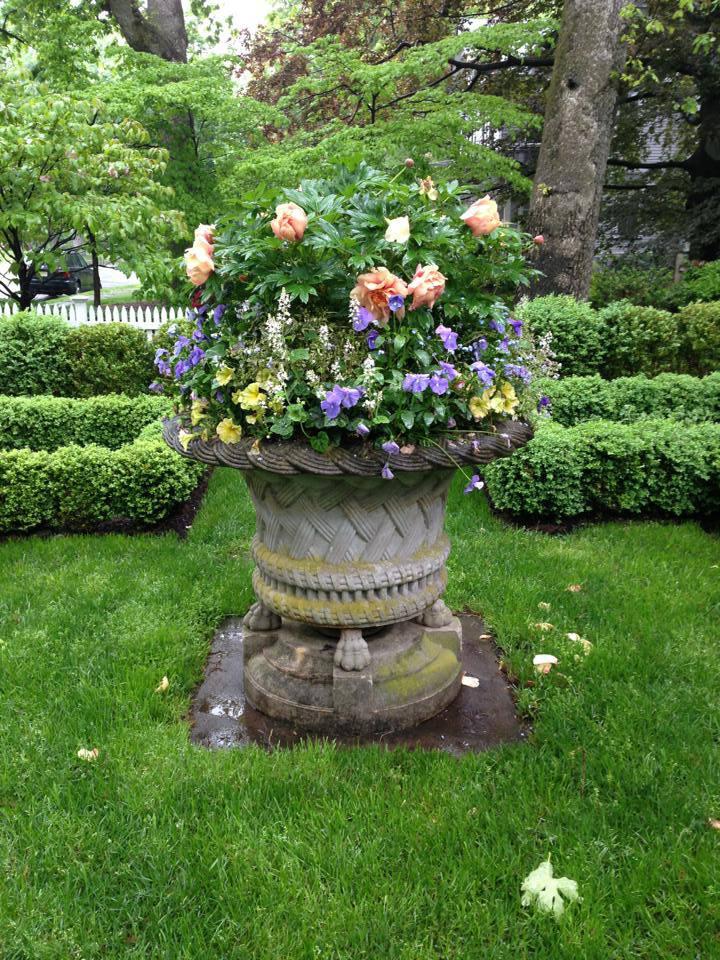 Container Gardens Spring Cording Landscape Design