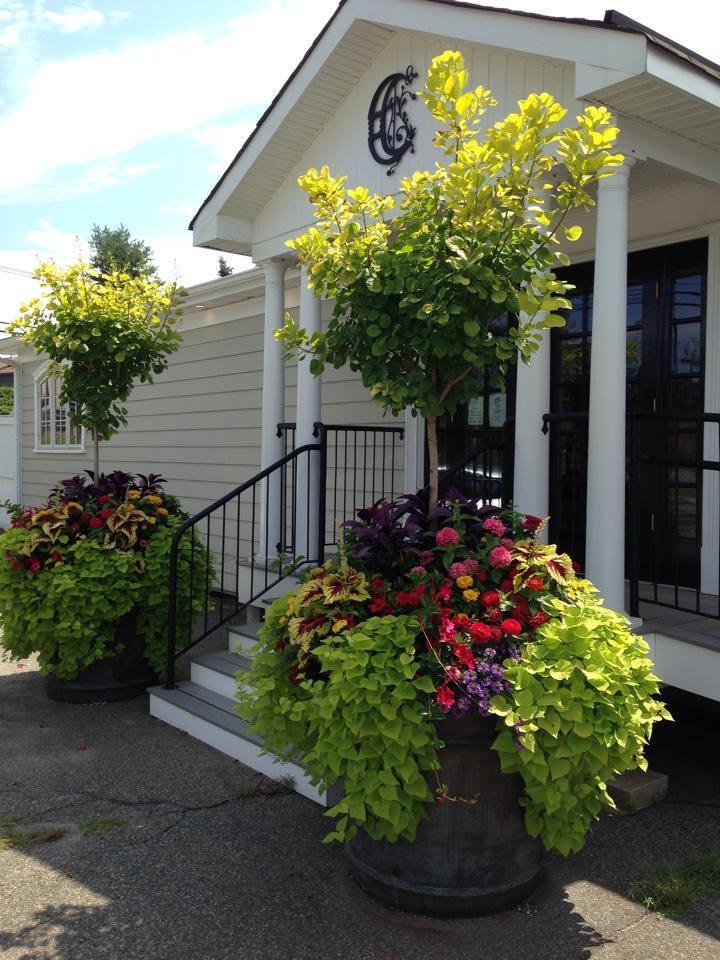 Container Garden Design Property container gardens - summer - cording landscape design