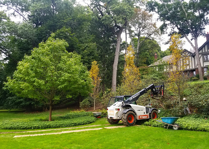 Landscape Design Construction Maintenance In New Jersey